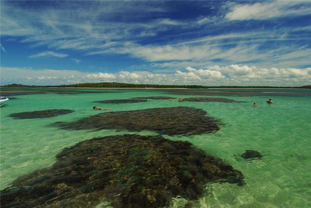 lá em Boipeba você encontrará piscinas tropicais com águas cristalinas